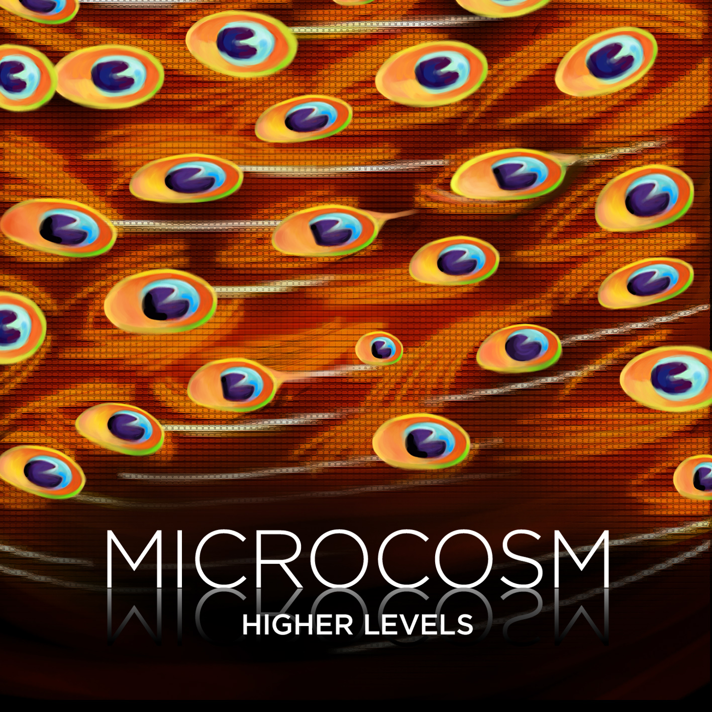 Microcosm - Higher Levels